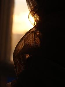 Sun Through My Window