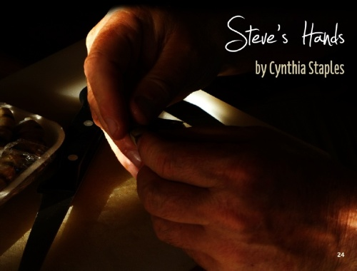 Steve Hands for Vine Leaves Literary Journal Issue 8