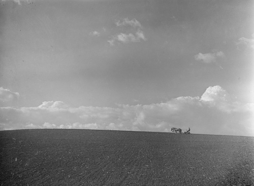 Farm scene. Lancaster County, Nebraska , photo by Arthur Rothstein, Library of Congress