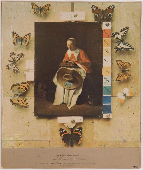 Hermann Wilhelm Vogel: Dreifarbendruck nach Verfahren: Vogel-Ulrich. Aufnahme nach Ölgemälde und natürlichen Schmetterlingen 1892 Museum Ludwig, FH 10248, Foto: © Rheinisches Bildarchiv