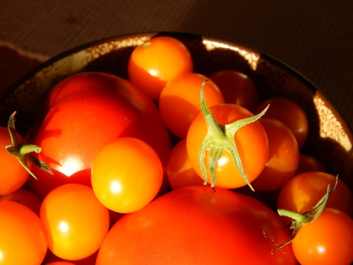 Mary's Tomatoes